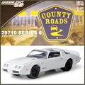 CR 6 - 1981 Pontiac FIREBIRD T/A - Greenlight - 1/64
