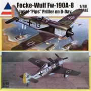 Focke Wulf FW 190 A-8 - Accurate - 1/48